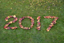 date 2017 in fall leaves in the grass