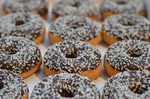 Chocolate covered donuts with white sprinkles.
