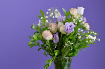 purple rose bouquet on a purple background