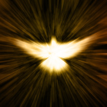 light glowing in the shape of a white dove