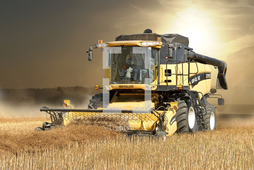 Combine harvesting canola with dust and dark clouds in the background