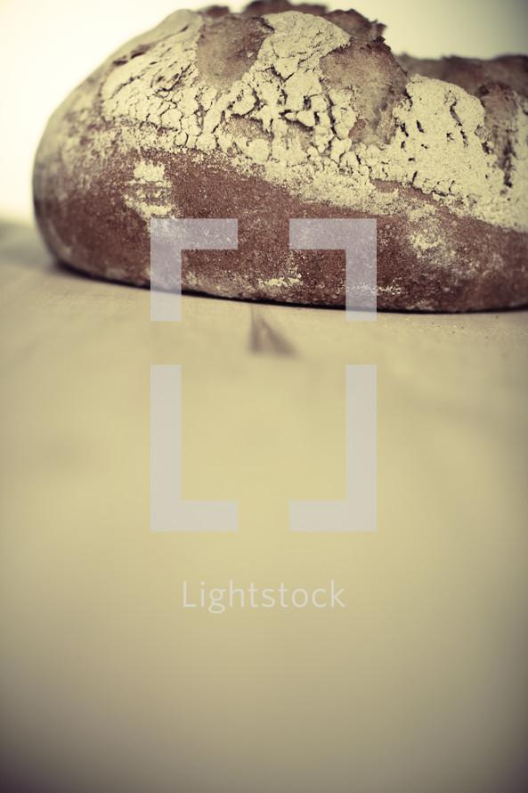 A freshly-baked loaf of bread