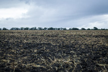 plowed field and rich soil