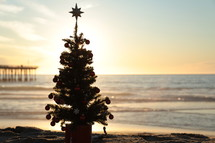 Miniature Christmas tree on the beach