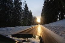 Icy road through a forest