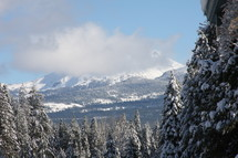 Snow-capped mountains and snow-covered pine trees