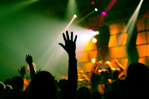 raised hands at a concert