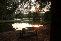 bench near a pond