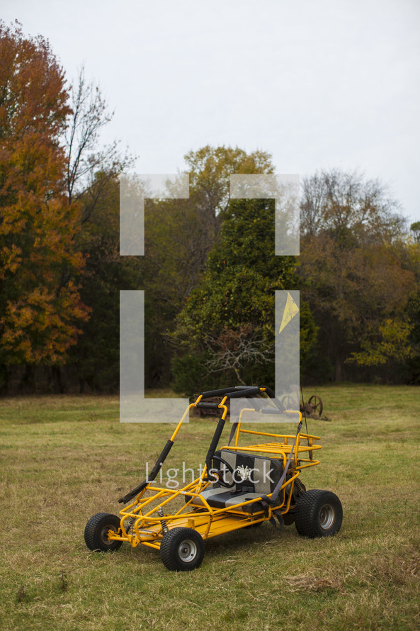 Dune buggy in field