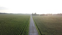 aerial view over a corn field in Indiana