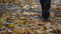 pedestrians walking through fallen colorful autumn leaves that are swirling in the wind.