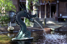 Dragon water spout