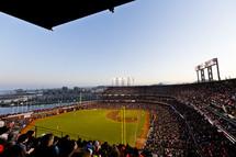 A professional baseball stadium.