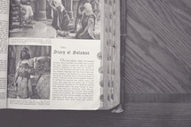 """Antique picture Bible open to """"The Story of Solomon."""""""