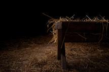 hay in a manger