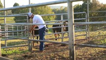 a rancher moving cattle