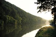 river alongside trees
