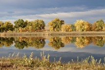 reflection of fall trees on pond water