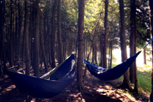 Hammocks hanging in trees outside.