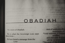 Open Bible in book of Obadiah