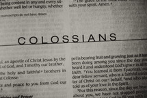 Open BIble in book in Colossians