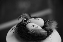 wedding bands on eggs in a birds nest