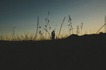 silhouette of a distant couple kissing in a field
