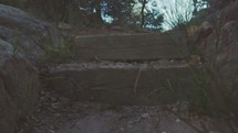 steps on a nature trail