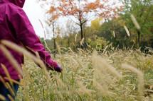 walking through a field of tall grasses