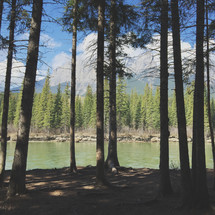 an iPhone capture of this forest and mountain river