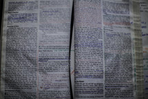 notes in the pages of a Bible