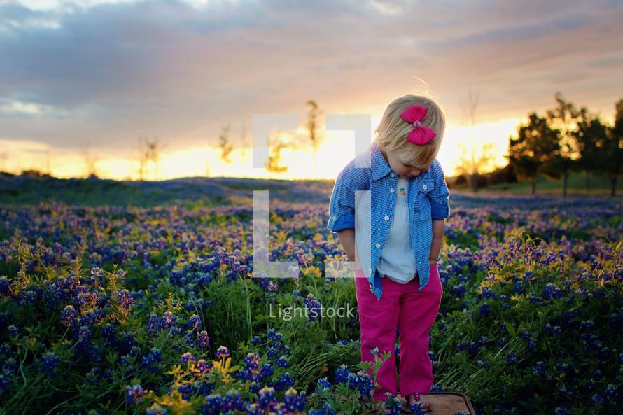 Little girl in wildflower field