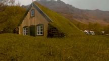 grass roof church