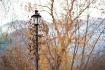 Street lamp in the Fall