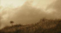 thick clouds over a field