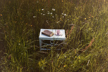 book and coffee cup on a table in tall grasses