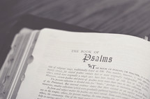 Bible open to the book of Psalms.