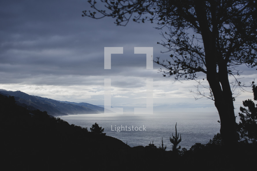 Silhouette of trees and hill with the misty ocean in the morning.