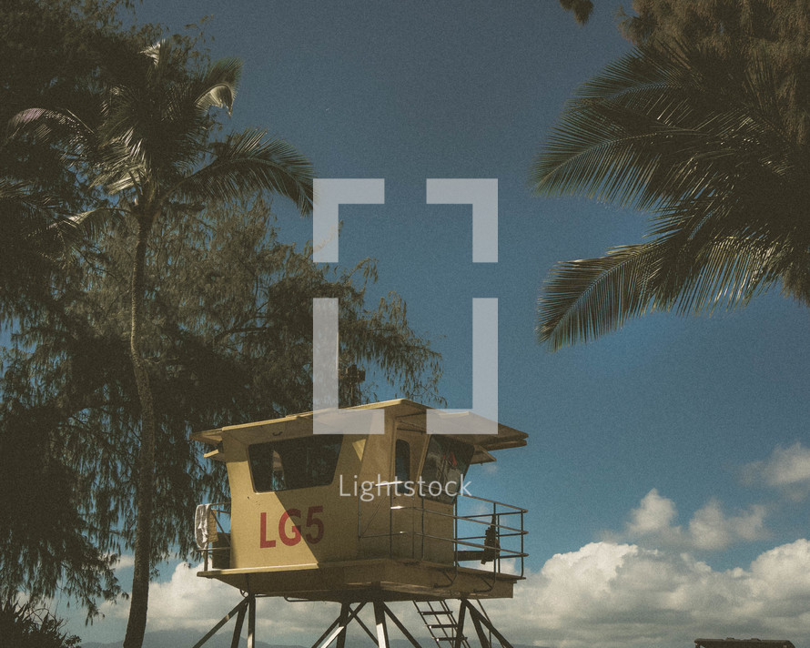 lifeguard stand and palm trees