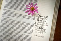 notes on the side of pages of a Bible