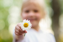little girl holding out a daisy
