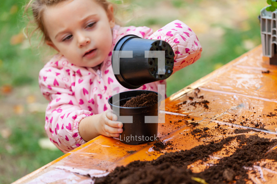 Closeup view of toddler child planting young beet seedling in to a fertile soil.