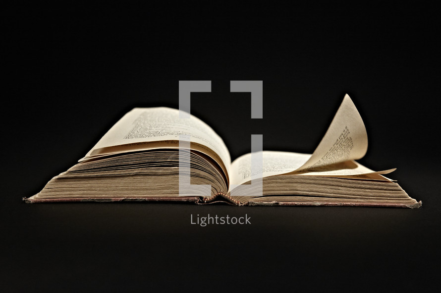 The pages of an open book