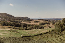 hay bales on hills in Italy