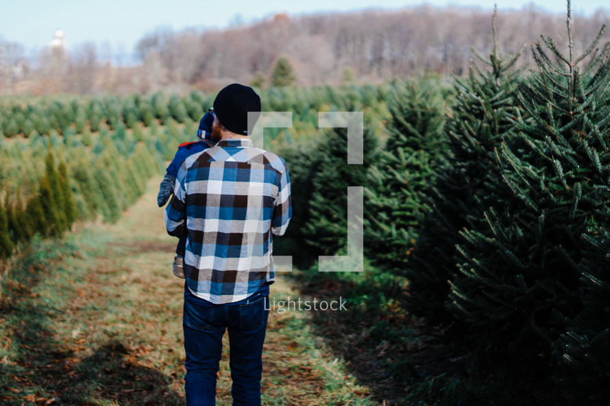 father and son at a Christmas tree lot