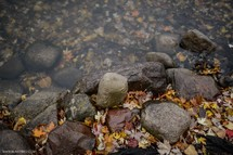Fall leaves and rocks next to a stream.