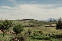 green landscape in Italy