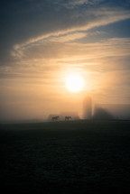 barn and horses in fog