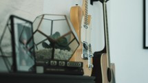 guitar and succulent plant