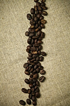A line of coffee beans